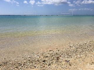 アラモアナビーチの写真・画像素材[1426246]