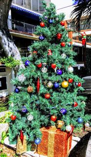 ハワイ ホノルルのクリスマスシーズンの写真・画像素材[1613252]