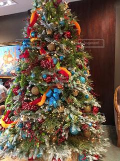 ハワイ ホノルルのクリスマスシーズンの写真・画像素材[1618739]