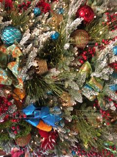 ハワイ ホノルルのクリスマスシーズンの写真・画像素材[1618740]