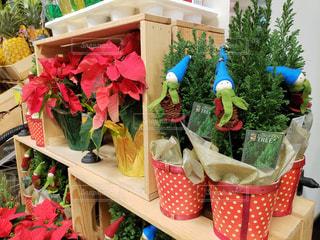 クリスマスシーズンのフードランド アラモアナ店の写真・画像素材[1656662]
