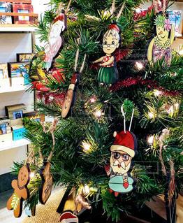 ハワイアンクリスマスツリーの写真・画像素材[1658707]