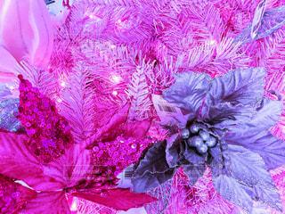 ピンクのクリスマス。。の写真・画像素材[1673742]