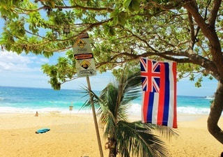 Hawaii Sandy Beachの写真・画像素材[3118360]