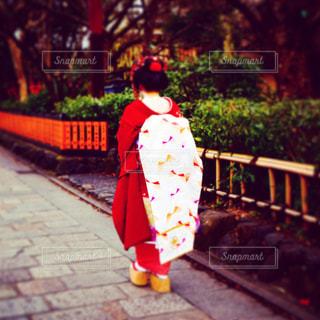 舞妓さんの写真・画像素材[1236380]
