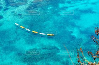 透き通る海の写真・画像素材[1283085]