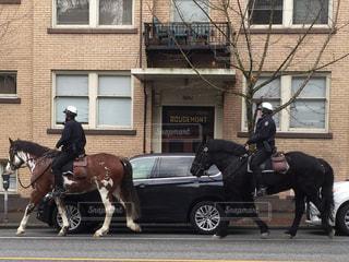 都市の通り乗馬人の写真・画像素材[1236079]
