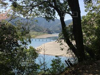 木の間から覗く四万十川と沈下橋の写真・画像素材[1239378]