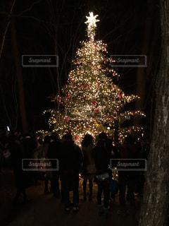 軽井沢クリスマスの写真・画像素材[1236439]