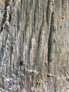 古い木材の表面の写真・画像素材[1289426]