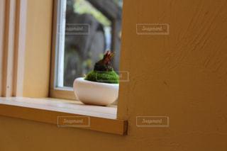 木製の窓辺の写真・画像素材[1243507]