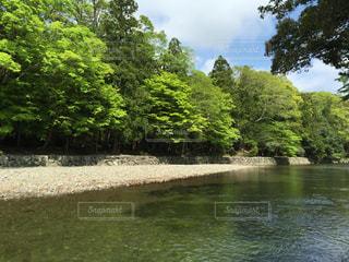 水と緑と青空との写真・画像素材[1533691]