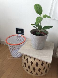 バスケット・ボール好きのインテリアの写真・画像素材[4311976]