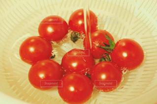 プチトマトの写真・画像素材[1386589]