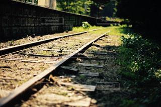 線路の写真・画像素材[1386785]