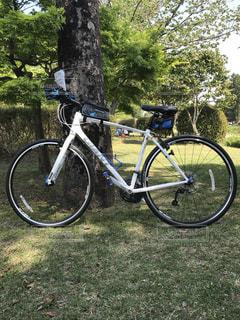 サイクリングの写真・画像素材[1239981]