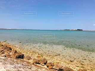 沖縄の海の写真・画像素材[1239519]