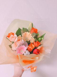 近くの花のアップの写真・画像素材[1242751]