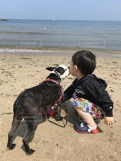 beachで子供と犬の写真・画像素材[1267483]