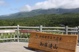 背景の山と木の看板の写真・画像素材[1242856]