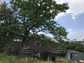 山小屋の写真・画像素材[1245399]