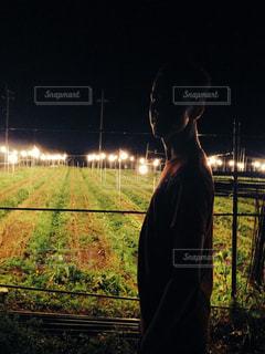 電照菊と暗闇の中に立っている男の人の写真・画像素材[1244682]