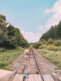 背景の木と、電車の中で電車のトラックします。の写真・画像素材[1245098]