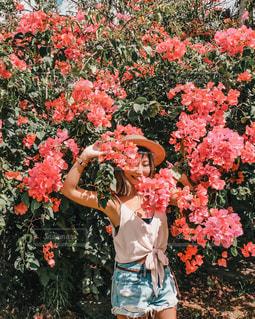 植物にピンクの花の前に立っている人の写真・画像素材[1842681]