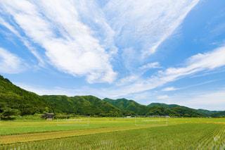 背景の山に大規模なグリーン フィールドの写真・画像素材[1252209]