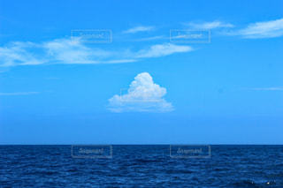 島の夏の写真・画像素材[1252403]