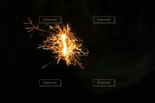 線香花火の写真・画像素材[1252407]