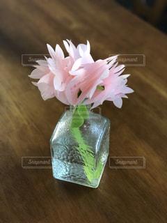 ピンクの花の写真・画像素材[1247252]