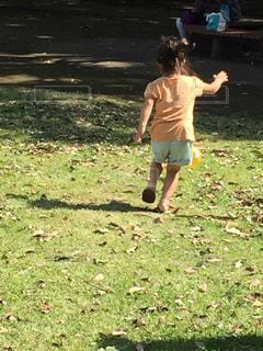 フリスビーで遊ぶ少年の写真・画像素材[1247093]