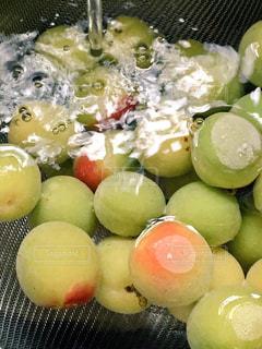 食品のボウルの写真・画像素材[1255635]