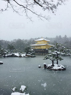雪の金閣寺の写真・画像素材[1248285]
