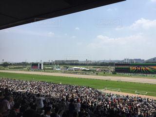 日本ダービー 東京競馬場 大歓声の写真・画像素材[1248868]