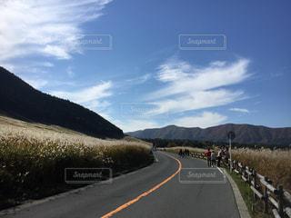 箱根、仙石原のススキの写真・画像素材[1256837]