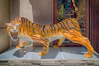 虎の像の写真・画像素材[1316357]