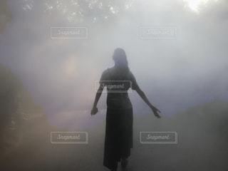 霧の中の森の写真・画像素材[1386471]