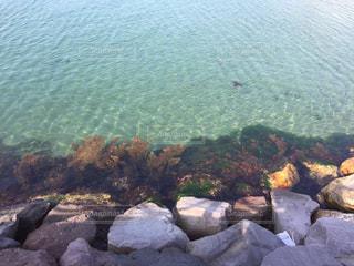 水の写真・画像素材[1266237]