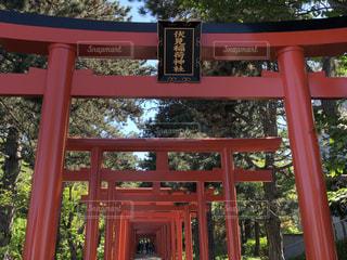 稲荷神社の写真・画像素材[1249956]