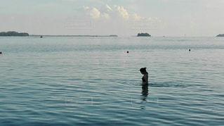水の体の横に立っている人の写真・画像素材[1312848]