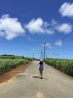 沖縄の夏、空に向かって歩く少女の写真・画像素材[1254101]