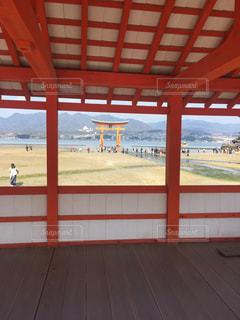 厳島神社の鳥居の写真・画像素材[1254188]