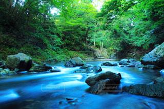 川の流れの写真・画像素材[1301297]