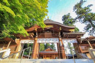 高麗神社の写真・画像素材[1392830]