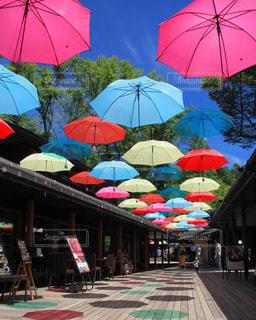 カラフルな傘の写真・画像素材[1392968]