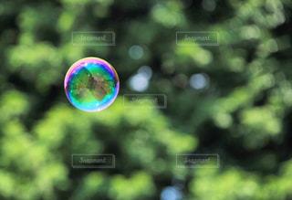 シャボン玉の写真・画像素材[1392979]