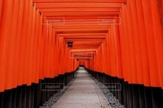 伏見稲荷大社を背景にした赤いカーテンのクローズアップの写真・画像素材[2462556]