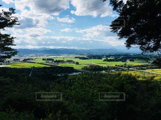 背景の木と大規模なグリーン フィールドの写真・画像素材[1265492]